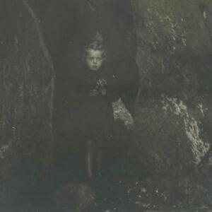 fotografia dziewczynka w drzewie